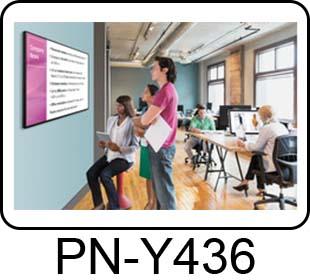 PN-Y436 Image